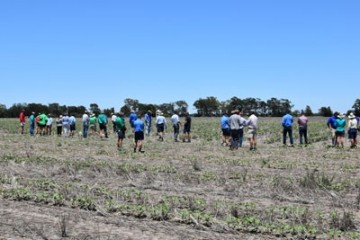 Growers Inspect Cover Cropping Trial