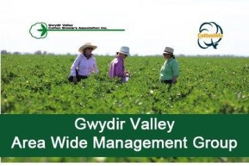 Gwydir Valley Area Wide Management Group